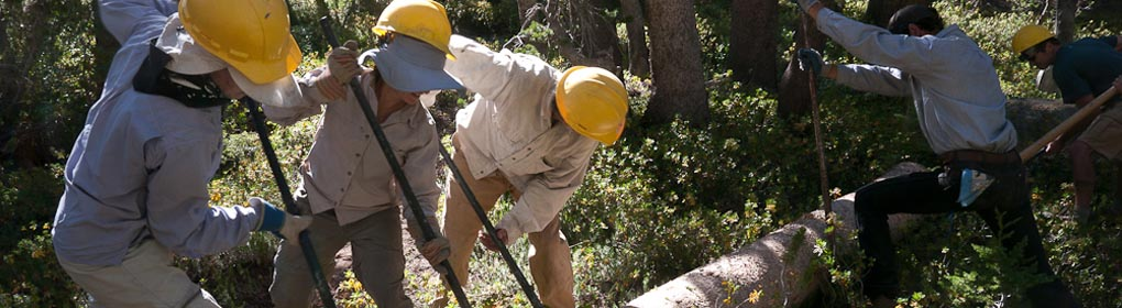 Volunteers build a backcountry bridge in the Sierra