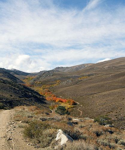 coyote flat road trail work day