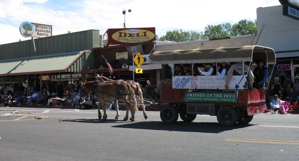 Our Mule Day Ride