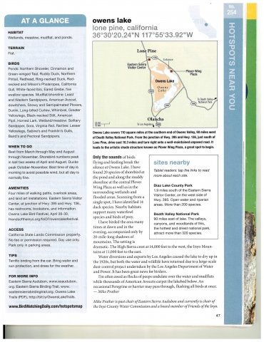 Owens Lake birdwatching article