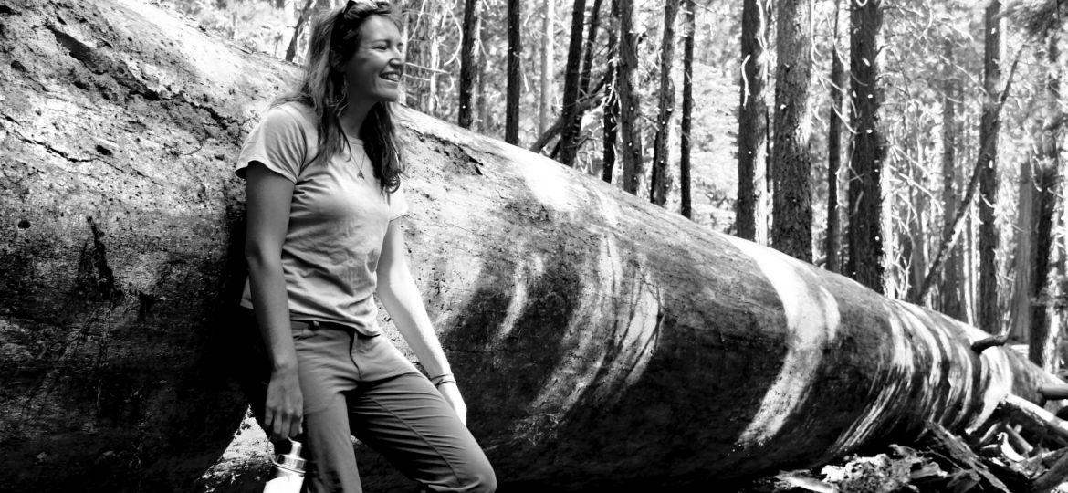 astra big log pano BW