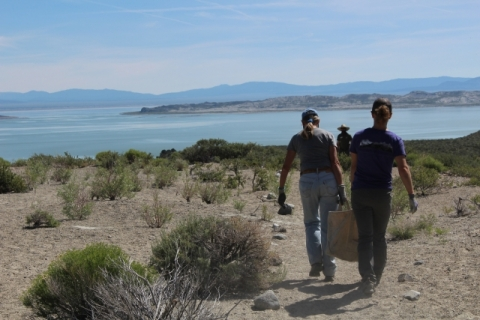 Mono lake volunteers