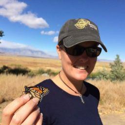Rachel monarch butterfly
