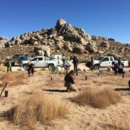 volunteers planting buttermilk boulders vehicles