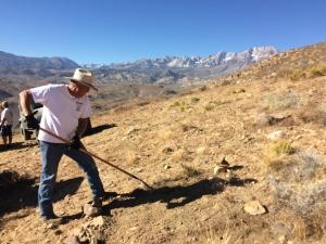 volunteer shoveling trail