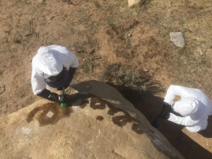 grafitti removal scrubbing