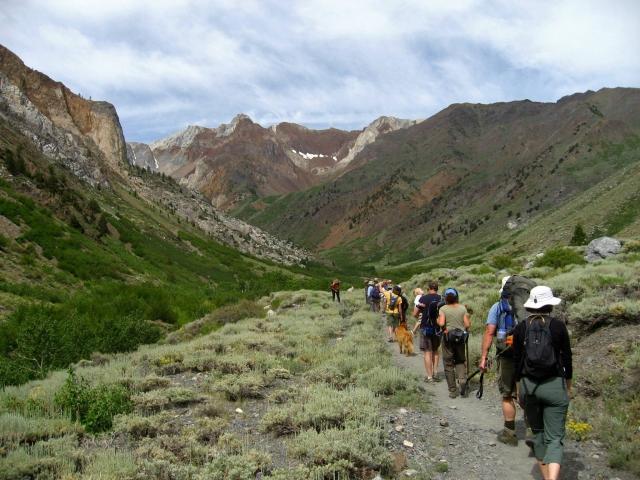 botany hike mcgee creek