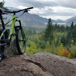 mountain bike overlooking forest