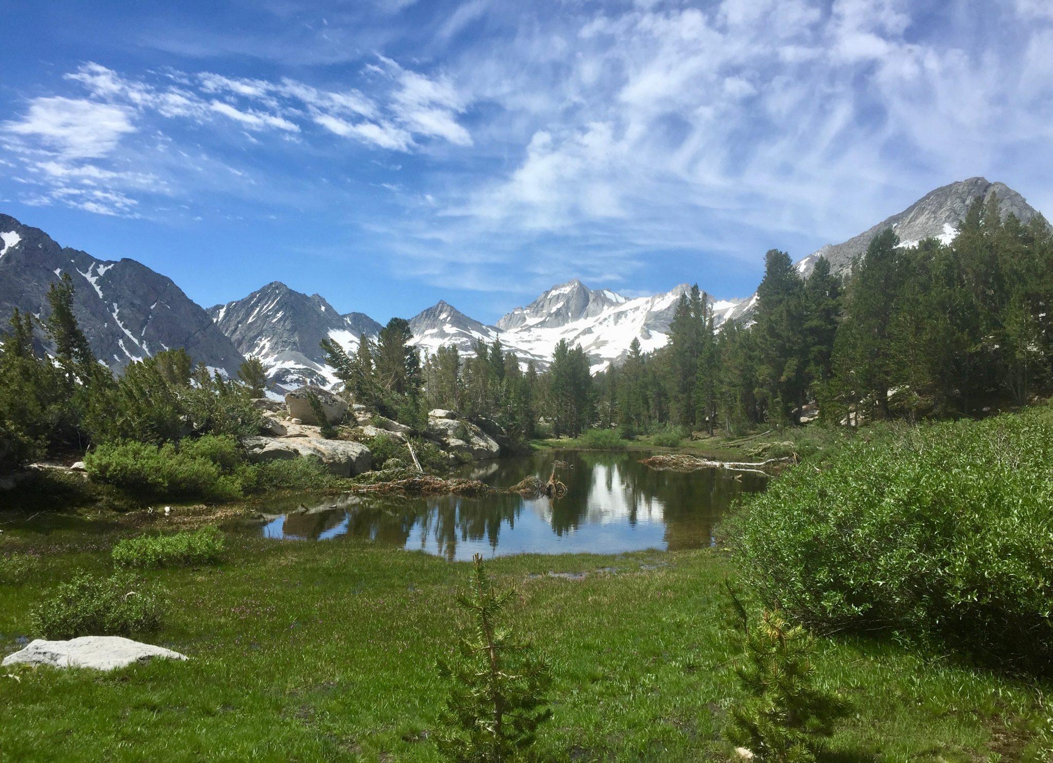 alpine meadow with snowy peaks sierra nevada