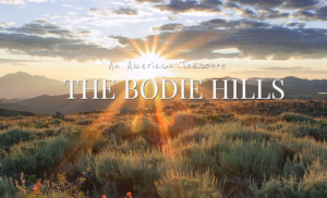 bodie hills text sage with sunrise