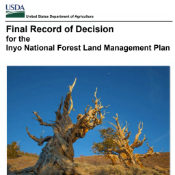 record of decision Inyo Forest Plan