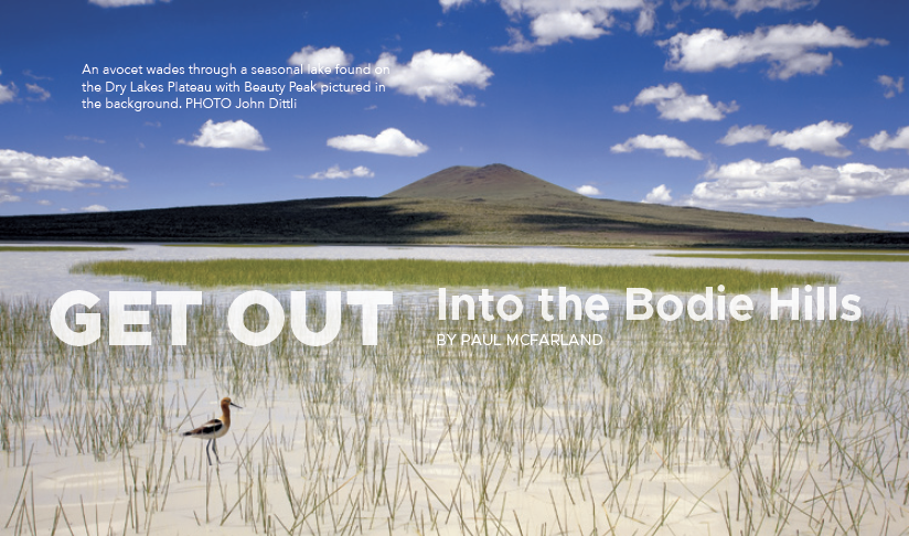 Bodie Hills get out preview
