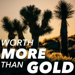 Worth More Than Gold