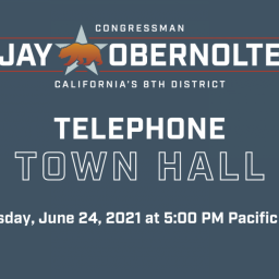 Obernolte Telephone Town Hall