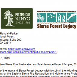 Fire Restoration and Maintenance featured image