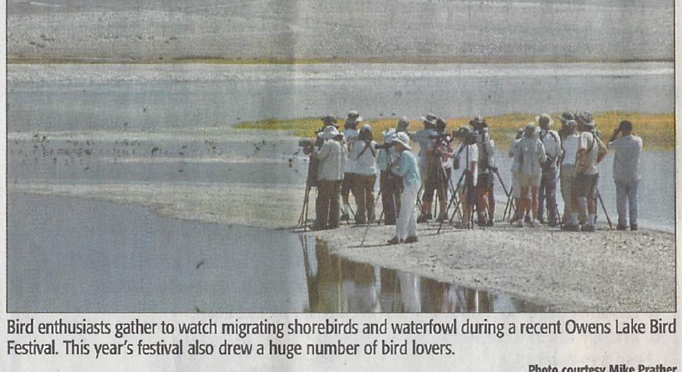 Fourth Bird Festival image Mike Prather